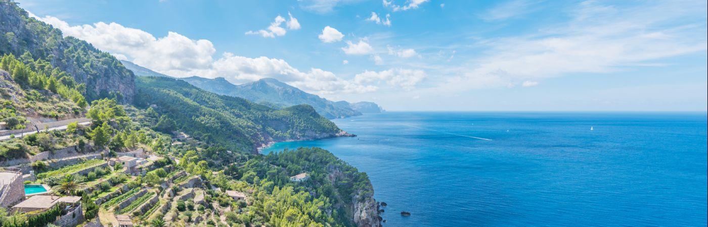Cultures en terrasse sur la côte de Majorque