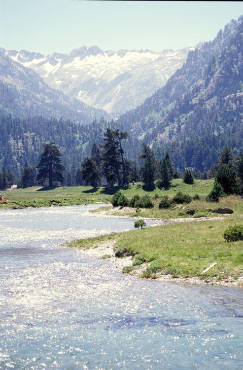 Vallée du Marcadau, près du Pont d'Espagne et de Cauterets